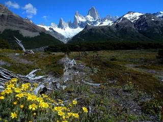 100211_patagonia20(937).jpg